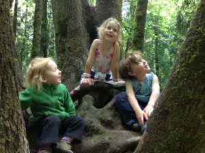 Kids in Trees